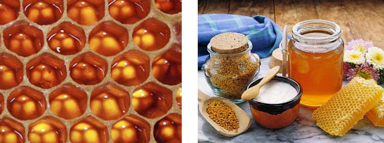 Мед - отличное средство в борьбе с головной болью