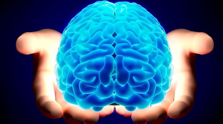 brain-720x400_c