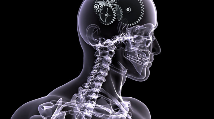 Рентгенография черепа и шейного отдела позвоночника