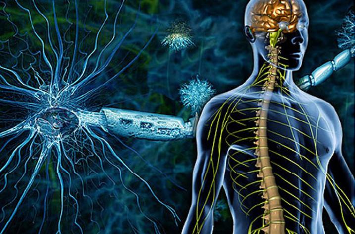 Рассеянный склероз: причины, симптомы, лечение