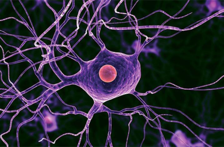 Что такое глиоз головного мозга?