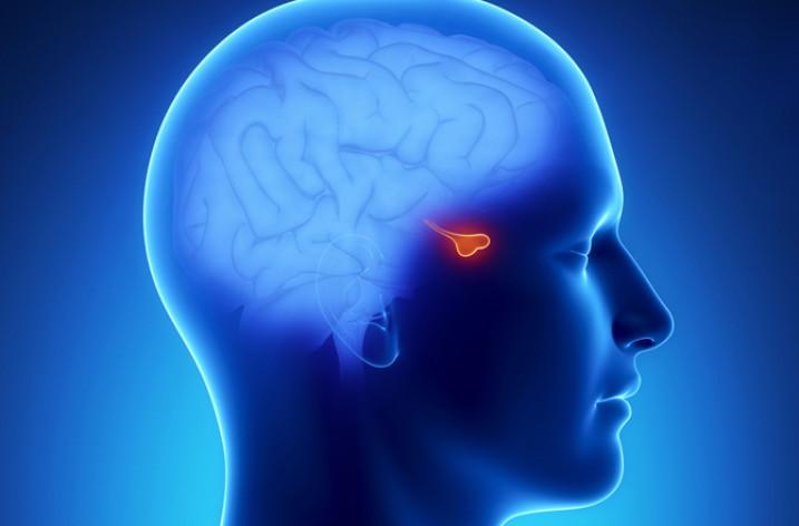 Аденома гипофиза головного мозга: причины, симптомы, лечение