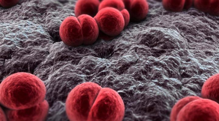 Гнойный менингит: причины, симптомы, лечение