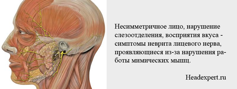 Нарушение работы мимических мышц может вызвать несимметричное выражение лица