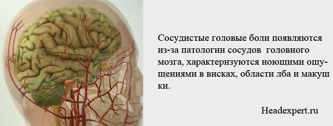 Сосудистые головные боли проявляются недомоганиями в области лба, висках