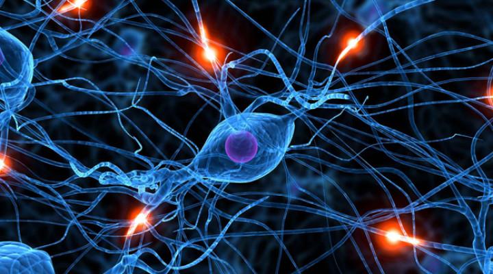 Микрополяризация головного мозга: показания и противопоказания