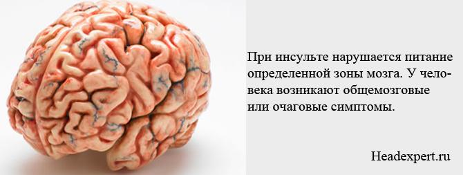 При поражении головного мозга нарушается его работа