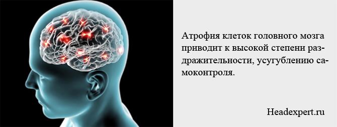 Гибель клеток головного мозга приводит к усугублению самоконтроля и эгоизму