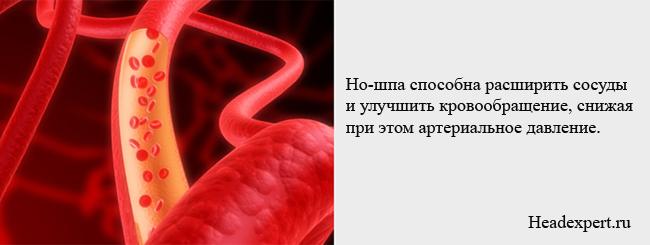Но -шпа расширяет сосуды и снижает артериальное давление